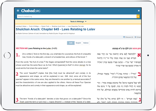 """According to Rabbi Yonah Avtzon, executive director of SIE publications, """"having a work of this magnitude available in English for the first time online is yet another step in our commitment to making core Jewish and Chassidic texts accessible to Jews around the world."""""""