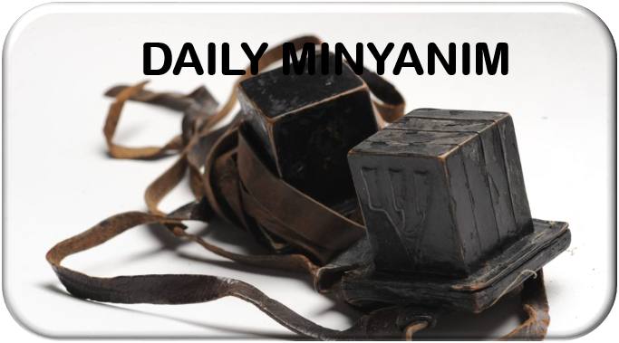 daily minyanim.png