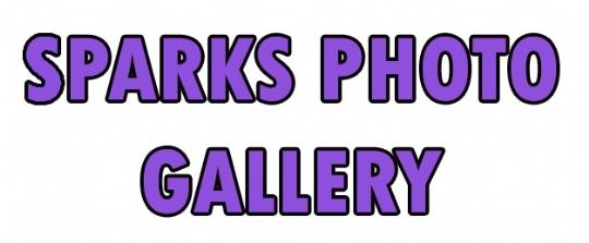 web gallery.jpg