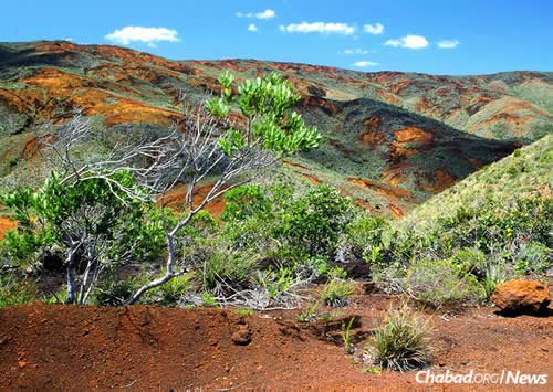 A typical landscape from the south of New Caledonia. The red-orange color of the rocks comes from the soil, which is rich in metal oxides. (Photo: Wikimedia Commons)